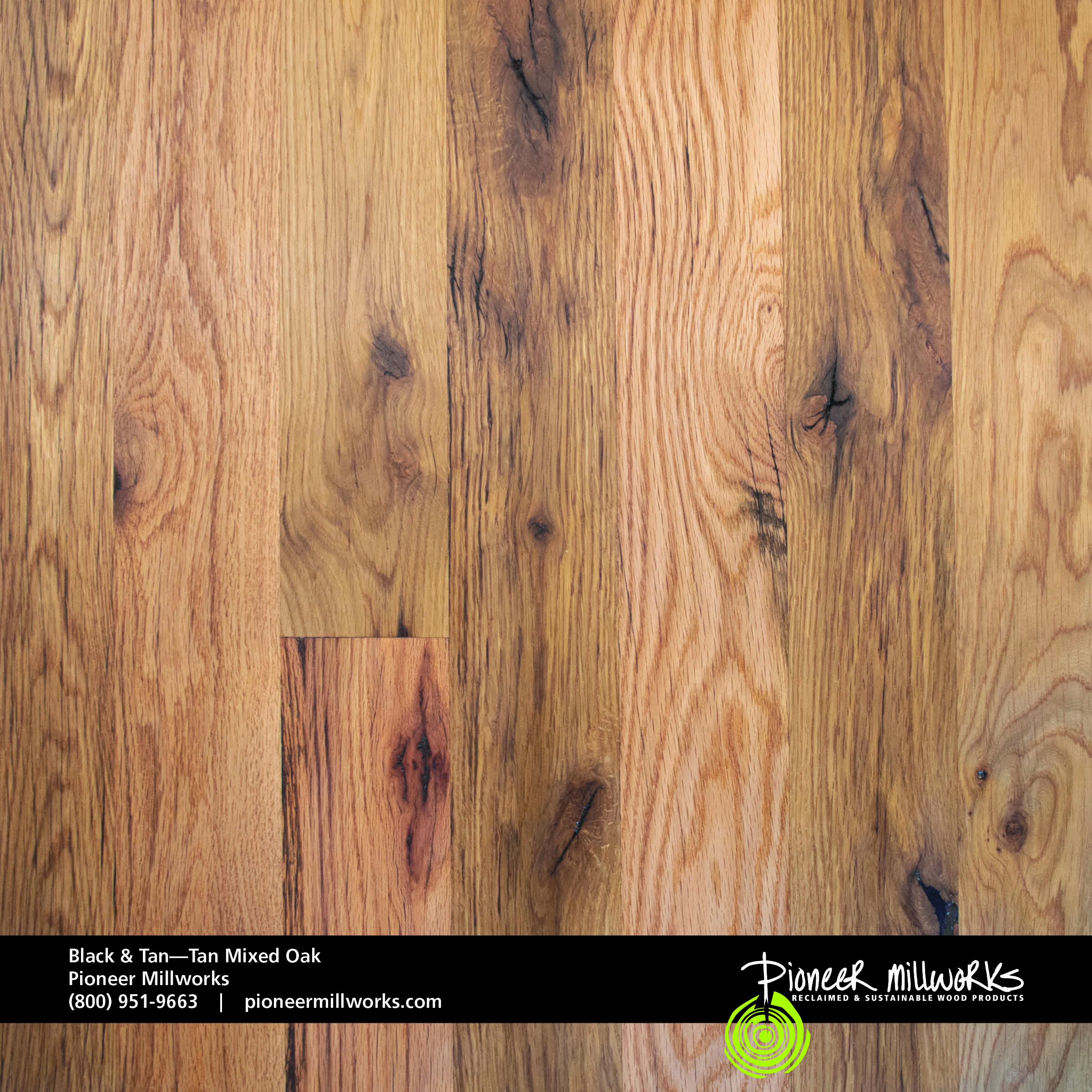Black Tan Oak Pioneermillworks
